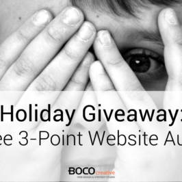 Holiday Giveaway: Free 3-Point Website Audit